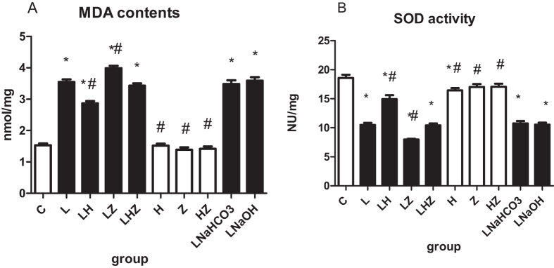 The comparisons of MDA contents and SOD activity among the 10 groups are shown in ( A , B ). ( A ) Shows the level of MDA contents. ( B ) Shows the level of SOD activity. Compared with control group(C). the MDA content in LPS group(L), LPS + NaHCO3 group(LNaHCO3) and LPS + NaOH group (LNaOH) was increased and SOD activity was decreased after the administration of LPS to rats (P