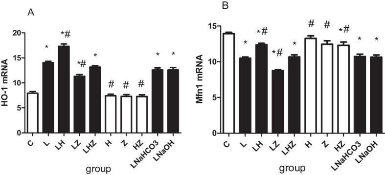 The in vivo mRNA expression of HO-1 and Mfn1 by RT-PCR. ( A ) Shows mRNA expression of HO-1. ( B ) Shows mRNA expression of Mfn1. Compared with control group(C), expression of Mfn1 was decreased, but expression of HO-1 was increased in LPS group(L), LPS + NaHCO3 group(LNaHCO3) and LPS + NaOH group (LNaOH)(P