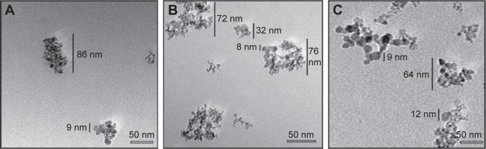 TEM images of ND ( A ), NDCONH(CH 2 ) 2 NH-VDGR ( B ), and NDCONH(CH 2 ) 2 NH-VDGR/survivin-siRNA ( C ). Abbreviations: TEM, transmission electron microscopy; ND, nanodiamond; siRNA, small interfering RNA.
