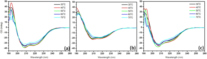 Temperature dependent CD spectra of keratin hydrolysates obtained by ( a ) Sulphitolysis ( b ) β-Mercaptoethanol ( c ) Thioglycolic acid based methods.