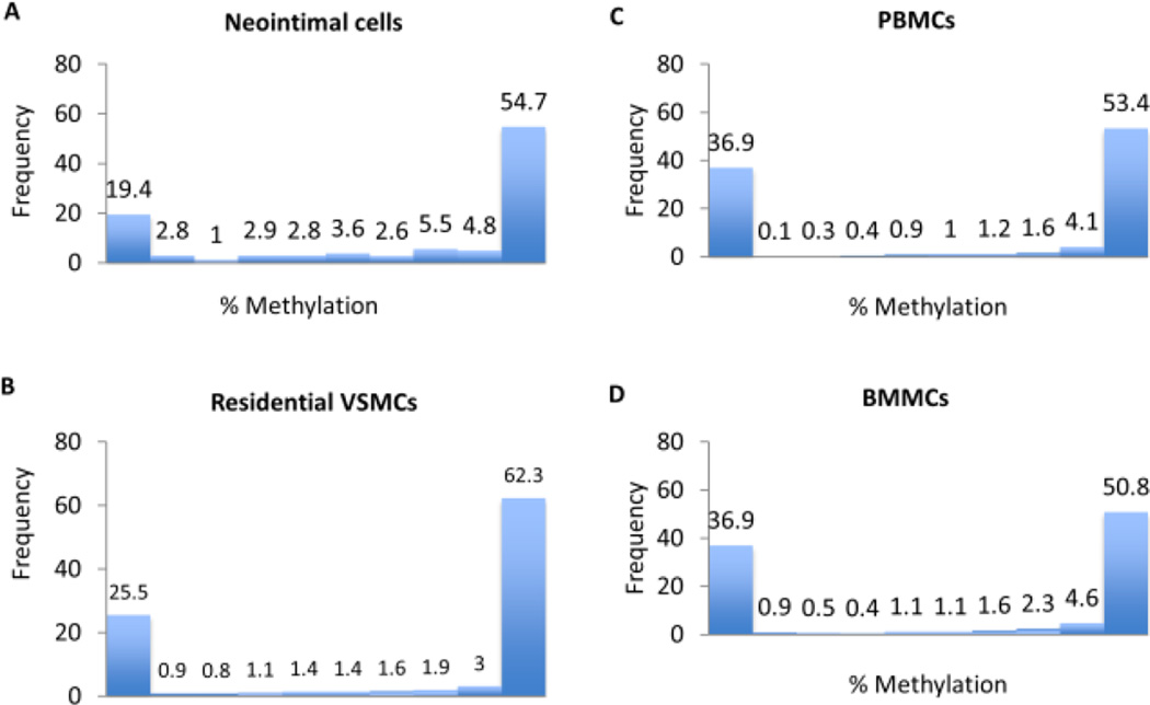 Histograms of methylation percentage per cytosine The distribution of methylation levels (%) across all CpGs is shown for neointimal cells (A), residential VSMCs (B), PBMCs (C) and BMMCs (D). Methylation levels are bimodal denoting that the majority of bases have either high or low methylation.