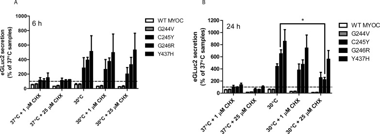 Enhanced MYOC secretion occurs independent of translation. ( A , B ) HEK-293T cells were transfected with WT, G244V, C245Y, G246R, or Y437H MYOC eGLuc2 for 48 hours at 37°C. The media was changed and cells were treated with 1 or 25 μM cycloheximide (CHX) at 37°C or 30°C for up to 24 hours. Conditioned media aliquots (50 μL) were assayed for MYOC eGLuc2 by the GLuc assay 6 ( A ) or 24 ( B ) hours after the temperature shift/CHX treatment ( n ≥ 3 independent experiments, ± SD, * P