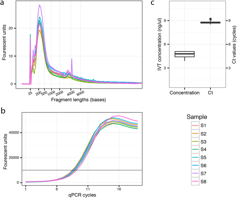 Quantitative evaluation of libraries prepared from total reference RNA. Sample-to-sample variation was investigated by small red triangles assessing the libraries at two points during the library preparation process. ( a ) The first evaluation is performed after in vitro transcription and checks the library concentrations and fragment lengths using a Bioanalyzer (Agilent). ( b ) After reverse transcription, a quantitative PCR (qPCR) was carried out to determine the suitable number of PCR cycles when indexing the finished libraries. The black vertical line marks the signal threshold at which point the cycle threshold (Ct) values were obtained. The spread of Ct values is illustrated in the boxplot ( c ), which also shows the variation in sample concentration as measured by the Bioanalyzer after in vitro transcription.