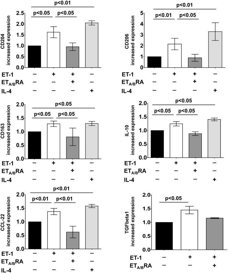 Evaluation of gene expression of M2 macrophage phenotype markers and TGFbeta1 in cultured human monocyte-derived macrophages. Quantitative real time polymerase chain reaction (qRT-PCR) of CD204, CD206, CD163, IL-10, CCL-22 and TGFbeta1 gene expression in cultured human monocyte-derived macrophages treated for 6 days with ET-1 (100nM) and IL-4 (10ng/mL) alone, or pre-treated with ET A/B RA (bosentan, 10 -5 M) for 1 hour before being stimulated with ET-1. Cultured human monocyte-derived macrophages maintained for 6 days in RPMI at 10% of FBS were used as untreated cells. The qRT-PCR was performed on six independent in vitro experiments and the data of CD204, CD206, CD163, IL-10, CCL-22 and TGFbeta1 gene expression are shown as mean±SD and indicated as increase in gene expression.