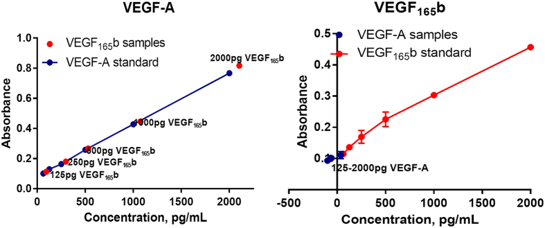 ELISA showing the specificity and sensitivity of VEGF 165a (VEGFA) and VEGF 165b antibodies.