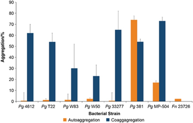 Quantitative autoaggregation levels of bacterial strains and coaggregation levels between Fusobacterium nucleatum ATCC 23726 and seven different Porphyromonas gingivalis strains. Data are expressed as percentage aggregation and represent the means and standard deviation of at least three independent experiments.