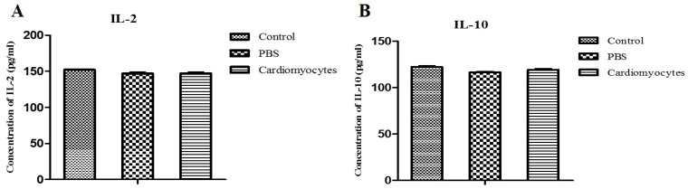 Comparative analysis of the serum levels of IL-2 and IL-10 in the systemic iCM injected mice and controls. The serum levels of IL-2 and IL-10 in the experimental mice (14 days after IP injection of iCM) were not different compared to those of the two control groups.