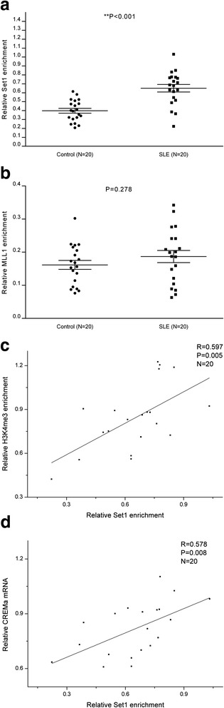 Set1 and MLL1 binding at the CREMα promoter in SLE and control CD4 + T cells. a , b Relative levels of Set1 ( a ) and MLL1 ( b ) binding within the CREMα promoter region in SLE and healthy CD4 + T cells were analyzed by ChIP and real-time PCR. Results were normalized to input DNA (total chromatin). c Positive correlation between Set1 promoter binding and H3K4me3 level in SLE CD4 + T cells. d Positive correlation between Set1 promoter binding and CREMα mRNA level in SLE CD4 + T cells. All experiments were repeated three times