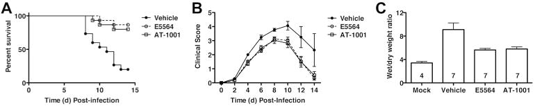 Effect of AT-1001 against lethal influenza challenge. (A) C57BL/6J mice were infected with mouse-adapted influenza strain PR8 (∼7500 TCID 50 , i.n.; ∼LD 90 ). Mice received vehicle (saline; i.v.), Eritoran (E5564; 200 μg/mouse; i.v.), or AT-1001 (150 μg/mouse; i.v.) from day 2 to day 6 post-infection. Survival (A) and clinical scores (B) were monitored daily for 14 days. Data shown is combined from 3 separate experiments (5 mice/treatment group/experiment). (C) Lung wet-to-dry (W/D) weight ratio as an index for pulmonary edema after infection. C57BL/6J mice were infected and treated as described above. On day 7 post-infection, lungs were harvested and and lung weights were measured immediately after excision and recorded as wet weight. Lung tissue was air dried for 5-6 days and re-weighed until a stable dry weight obtained. The W/D weight ratio was calculated by dividing the wet by dry weight. The N for each group is indicated in each bar. Each vertical bar represents the mean ( + s.e.m.).