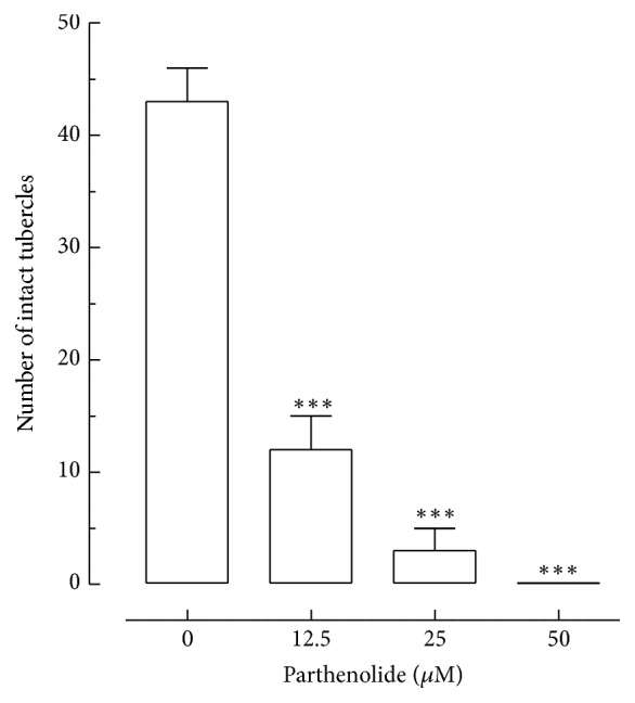 Effect of parthenolide on tubercles of S. mansoni male worms. The quantification of the number of tubercles was performed using confocal microscopy. Indicated are numbers of intact tubercles and these numbers were measured in a 20,000 μ m 2 of area calculated with the <t>Zeiss</t> <t>LSM</t> Image Browser software. Praziquantel (PZQ, 5 μ M) was used as positive control. A minimum of three tegument areas of each parasite were assessed. Values are means ± SD (bars) of ten male adult worms. ∗∗∗ P