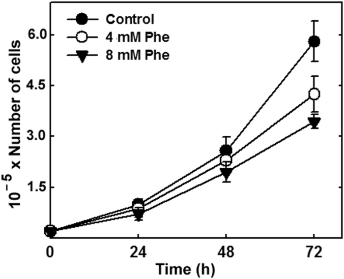 Effect of high Phe treatment on cell proliferation. CAD cells were seeded (2 × 10 4 cells per 35-mm dish), incubated for 24, 48, or 72 h in the absence or presence of 4 mM or 8 mM Phe, stained with Trypan Blue, transferred to a <t>Neubauer</t> Chamber, and counted using an optical inverted microscope. Data shown are mean ± SD from three independent experiments.