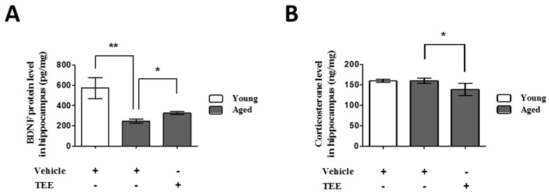 Oral administration of TEE decreased corticosterone and increased brain-derived neurotrophic factor (BDNF) in in aged hippocampus. The corticosterone ( A ) and BDNF ( B ) levels in the mouse hippocampus were measured using ELISA. Each bar represents the mean ± SEM for each group ( n = 9). The asterisks denote a significant difference (*, p