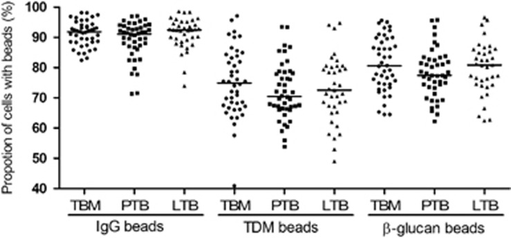 Phagocytic ability of macrophages from individuals with different TB phenotypes. Monocyte-derived macrophages from patients at day 7 were treated with Alexa 547-beads coated with either immunoglobulin-G (IgG), trehalose 6,6'-dimycolate (TDM) or <t>β-glucan.</t> Phagocytic ability was determined by the percentage of macrophages with beads in three TB phenotypes (55 TB meningitis, 52 pulmonary TB and 56 latent TB). Bars in plots represent median values. Comparisons across three groups of TB forms or genotypes were performed by using one-way analysis of variance. On these comparisons, P -values > 0.05.