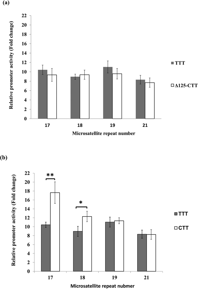 Effect of the C allele of rs35767 on IGF1 promoter activity. (a) There was no significant difference in promoter activity between haplotype T-T-T and SacI digested haplotype C-T-T. (b) Compared to the promoter activity of haplotype C-T-T, which has been described previously 29 , a significant decrease in promoter activity was observed in plasmids with low microsatellite repeat numbers, 17 or 18 repeats. Relative luciferase activity is shown as mean ± SD. One-way ANOVA was used for group comparison among four STRs (in a ) and student's t test was used for comparison of two haplotypes (in b ). Each assay was repeated for four times in each of the four independent experiments (n = 16) (* p