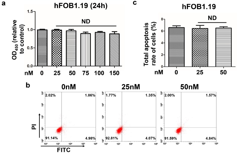 ( a ) The vitality of hFOB1.19 cell treated with different concentrations of oleandrin for 24 h that detected by <t>CCK-8</t> assays; n = 5, Mean ± SEM; ND: no difference, vs. control (0 nM) group; ( b ) The apoptosis of hFOB1.19 cells treated with different concentrations of oleandrin that detected by FCM; and ( c ) Statistical analysis of the total apoptosis rate of hFOB1.19 cells followed by FCM detection; n = 3, Mean ± SEM; ND: no difference, vs. control (0 nM) group.