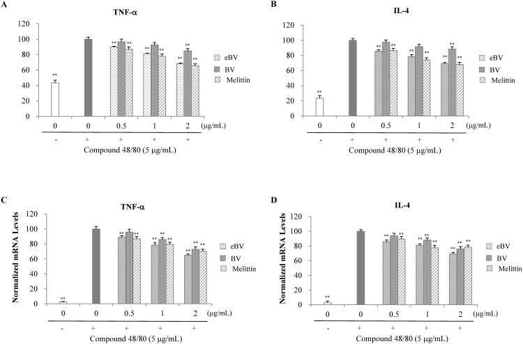 Effect of eBV on TNF-α and IL-4 in compound 48/80-stimulated RBL-2H3 cells. (A, B) RBL-2H3 cells were treated with compound 48/80 (5 μg/mL) in the presence of eBV, BV, and melittin (0.5, 1, and 2 μg/mL) for 30 min. TNF-α and IL-1β levels were measured using an ELISA kit. (C, D) RBL-2H3 cells were treated with compound 48/80 (5 μg/mL) in the presence of eBV, BV, and melittin (0.5, 1, and 2 μg/mL) for 30 min. Total RNA was isolated and further analyzed by real-time PCR. The results are presented as relative expression levels compared with those in unstimulated cells and were normalized to β-actin expression. Data are presented as mean ± SD (n = 3). ** P