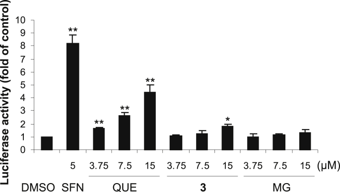 7- O -Galloylquercetin ( 3 ) induces ARE-driven gene expression. AREc32 reporter cells were treated for 24 h with 0.1% DMSO (control), 5 μM sulforaphane (SFN; positive control) or with 3.75–15 μM 3 , quercetin (QUE) or methyl gallate (MG). After treatment, luciferase reporter activity was determined luminometrically and normalized to protein content. Data are means ± SD of three experiments. * p