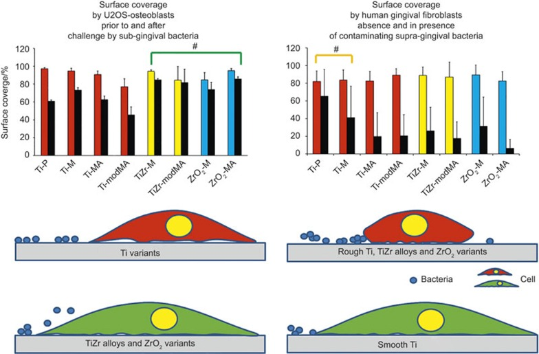 Battles occurring on the osseointegratable part of a dental implant between an existing layer of adhering U2OS osteoblasts and challenging periodontopathogens (left panel) and on the neck of an implant between gingival fibroblasts and contaminating oral bacteria adhering to the implant surface (right panel). Left panel: a comparison of the surface coverage by U2OS cells on dental implant materials grown prior to (coloured bars) and after (black bars) of a challenge by sub-gingival, oral bacterial strains. Data represent averages over P. intermedia ATCC 49046 and P. gingivalis ATCC 33277. On TiZr alloys and ZrO 2 variants, adhering osteoblasts withstand a challenge by sub-gingival bacteria more effectively than on Ti variants, regardless of surface roughness (green coloured, well-spread cell versus red cell), making TiZr alloys and ZrO 2 variants most suitable for the osseointegratable part of an implant. Right panel: a comparison of the surface coverage by human gingival fibroblasts on dental implant materials grown in absence (coloured bars) and presence (black bars) of contamination by adhering supra-gingival, oral bacteria ( Streptococcus oralis J22, Streptococcus mitis BMS, Streptococcus salivarius HB and Staphylococcus aureus ATCC 25923). Data represent averages over the four strains indicated (data taken with permission from Zhao et al. 11 ). Displacement of contaminating supra-gingival bacteria from smooth Ti variants (green coloured, well-spread cell versus red, rounded-up cell) is easier than from the other implant materials included in this study, making smooth Ti variants most suitable for the neck of an implant. #These materials on average perform better than the other materials with respect to a bacterial challenge of an existing cellular layer or integration of a material in the presence of contaminating bacteria.