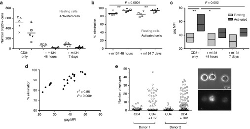 ImmTAV-mediated elimination of activated and resting HIV-infected CD4+ T-cells. Purified PHA-stimulated CD4+ T-cells from the same five HLA-A*0201-positive ART-treated patients as in Figure 5 were cultured with healthy donor CD8+ T-cells alone or with ImmTAV m134 (10 –8 mol/l). The ImmTAV was either present for the duration of coculture or washed out after 48 hours. ( a ) The number of activated (CD25+/CD69+/HLA-DR+) and resting (CD25-/CD69-/HLA-DR-) Gag+ CD4+ T-cells remaining on day 7 of coculture and ( b ) percent elimination of infected cells, normalized to CD8-only values, within each subset is shown. ( c ) Mean fluorescence intensity (MFI, arbitrary units) of Gag expression in residual infected activated and resting CD4+ T-cells after culture under the conditions indicated (as for a and b ; bars and horizontal lines represent range and mean respectively). Consistency in MFI values was ensured by acquiring all samples in a single run. ( d ). Correlation between Gag MFI (arbitrary units) and normalized percent elimination of infected cells. ( e ) Biotinylated m134 ImmTAV was detected by microscopy on the surface of individual HIV-1 IIIB-infected CD4+ T-cells from two healthy donors after staining with streptavidin-PE. Data shown in left panel represent counts of fluorescent spots; the total for each cell was obtained using Z-stack images. Uninfected cells were used to determine background staining. Right panel: representative phase-contrast (top) and corresponding fluorescence images (bottom) of infected CD4+ T-cells from donor 1 stained with m134 ImmTAV. Fluorescence images are 3D reconstructions of individual planes. The brightness/contrast of images was adjusted to optimize epitope visualization. The scale bar represents 10 µm. HLA, human histocompatibility leukocyte antigen; PHA, phytohemagglutinin; HIV, human immunodeficiency virus; ImmTAV, immune-mobilising monoclonal T-cell receptors against virus.
