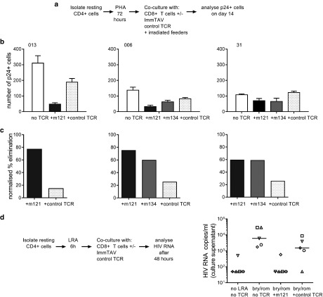 ImmTAV-mediated clearance of autologous HIV reservoir cells. ( a ). Schema illustrating assay to quantify ImmTAV-mediated elimination of resting HIV-infected Cd4+ T-cells from ART-treated patients after viral reactivation. CD25-/69-/HLA-DR- CD4+ cells were thoroughly washed after PHA treatment and cultured in duplicate at a density of 3 × 10 5 cells/well alone, with autologous CD8+ T-cells only or with healthy donor CD8+ T-cells plus ImmTAVs (10 –9 mol/l). Irradiated allogeneic PBMC feeders (1.5–3 × 10 6 ) were added to all wells. CD8+/CD4+ cell ratios were 1:1 throughout. After 14 days, Gag+ cells were quantified by flow cytometry. ( b ) Number of Gag+ cells remaining at day 14 of culture (mean of duplicate wells). ( c ) Percent elimination of Gag+ cells, determined by normalizing to no TCRs. In all subjects, culture supernatants from CD4+ cell-only wells were positive for free p24 Ag and ImmTAV-treated wells were negative (determined by enzyme-linked immunosorbent assay, cut-off 1500 pg/ml). (d) CD25-/69-/HLA-DR- CD4+ cells from five ART-treated HLA-A*0201-positive subjects were thoroughly washed after LRA (bryostatin / romidepsin) treatment and cultured in duplicate with healthy donor CD8+ T-cells (1:1 ratio) ± ImmTAV m121 or control TCR (10 –9 mol/l) for a further 42 hours. Supernatants were harvested and viral outgrowth was determined by quantification of HIV RNA, as described in Materials and Methods. LRA, latency-reversing agent; HLA, human histocompatibility leukocyte antigen; ART, antiretroviral therapy; PHA, phytohemagglutinin; HIV, human immunodeficiency virus; ImmTAV, immune-mobilising monoclonal T-cell receptors against virus; PBMC, peripheral blood mononuclear cells; TCR, T-cell receptor.