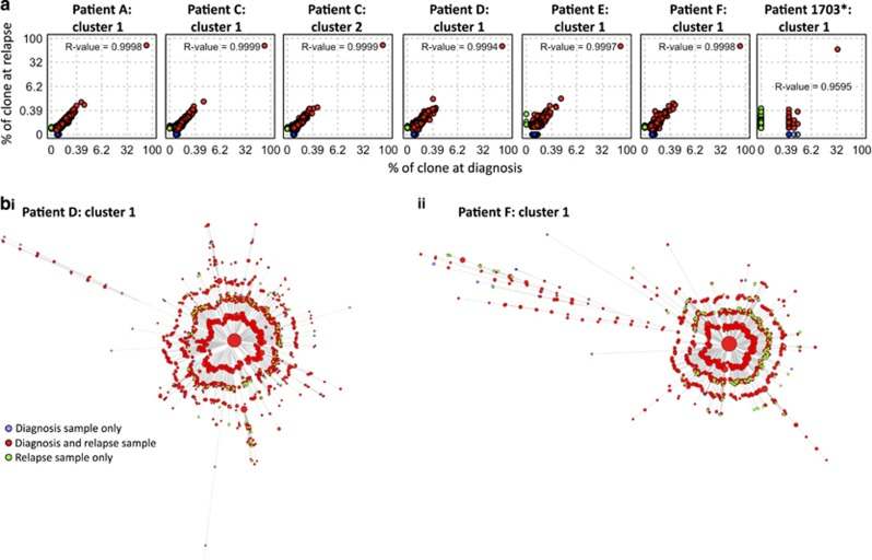 Phylogenetic analysis of paired diagnosis-relapse B-ALL samples. ( a ) The correlation of B-ALL BCR frequencies between diagnostic and relapse samples (as a percentage of reads in the corresponding clone) observed in (from left to right) DNA samples for patient A cluster 1, patient C cluster 1, patient C cluster 2, patient D cluster 1, patient E cluster 1 and patient F cluster 1 and for patient 1705 cluster 1 (day 0 (combined RNA and DNA sequencing data sets) against relapse (day 567, RNA sequencing data set)). Point colors are blue if the BCR was present only in the diagnostic sample, red if present in both the diagnostic and relapse samples, and green if present only in the relapse sample. Cube-root scales used to highlight the low-frequency BCRs, and presented with the corresponding R 2 values. ( b ) Unrooted maximum parsimony trees showing the relationships between sequences observed in diagnostic and relapse DNA samples for (i) patient D cluster 1 and (ii) patient F cluster 1. Branch lengths are proportional to the number of varying bases (evolutionary distance). Bootstrapping was performed to evaluate the reproducibility of the trees suggesting strong support for the majority of the branches ( > 70% certainty for branches). Tips represent BCR sequences with point sizes correlating with the proportion of reads for a particular sequence (for display purposes this is not the case for the central cluster, whose size is fixed). The tip colors are blue if the BCR was present only in the diagnostic sample, red if present in both the diagnostic and relapse samples and green if present only in the relapse sample. *The day 0 sample for patient 1703 was taken after chemotherapy had started, hence the depletion of the diagnostic repertoire reflected in the dominance of green tips.