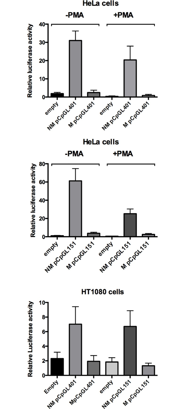 Effect of DNA methylation on PLAT promoter-driven reporter gene activity. Reporter gene activity of methylated (M) or unmethylated (NM) plasmids was compared after transfection of HeLa cells (top and center) or HT 1080 (bottom) with pCpGLprom401 and pCpGLprom151 plasmids, which contain the PLAT promoter region from -401 to +151 and -151 to +151, respectively, linked to a CpG-less firefly luciferase gene. Note that reporter gene activity of the methylated plasmids was the same as that of reporter gene plasmids lacking a promoter (empty) and markedly reduced compared to unmethylated plasmids. Results are presented as means ± SEM of 3 to 4 independent experiments.