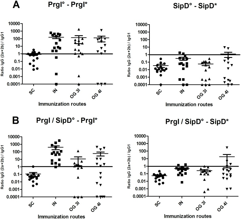 IgG (2a +2b) / IgG 1 ratio after PrgI (left) and SipD (right) immunizations. Mice immunized with PrgI or SipD separately are represented on panel A and those receiving both PrgI and SipD on panel B. Data represent mean and the standard errors (SEM) from 14–16 mice per group. [°: indicates immunogen injected; *: indicates biotinylated recombinant protein].