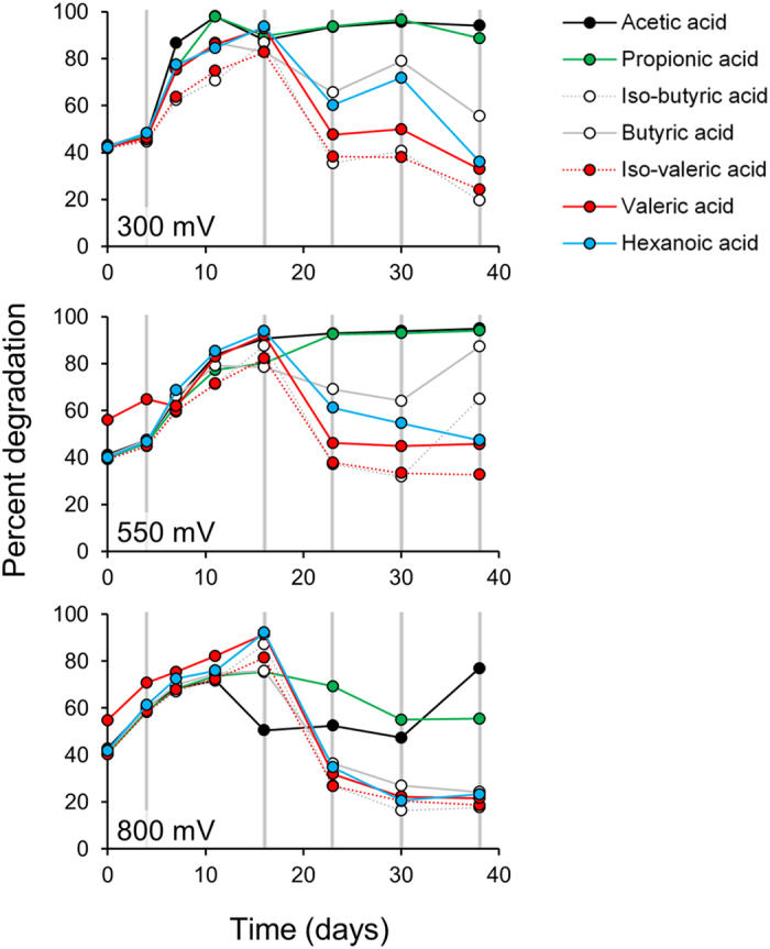 Degradation of Volatile Fatty Acids at different anode potentials over time. The grey vertical lines indicate the times that the reactors were paused for biofilm sampling.