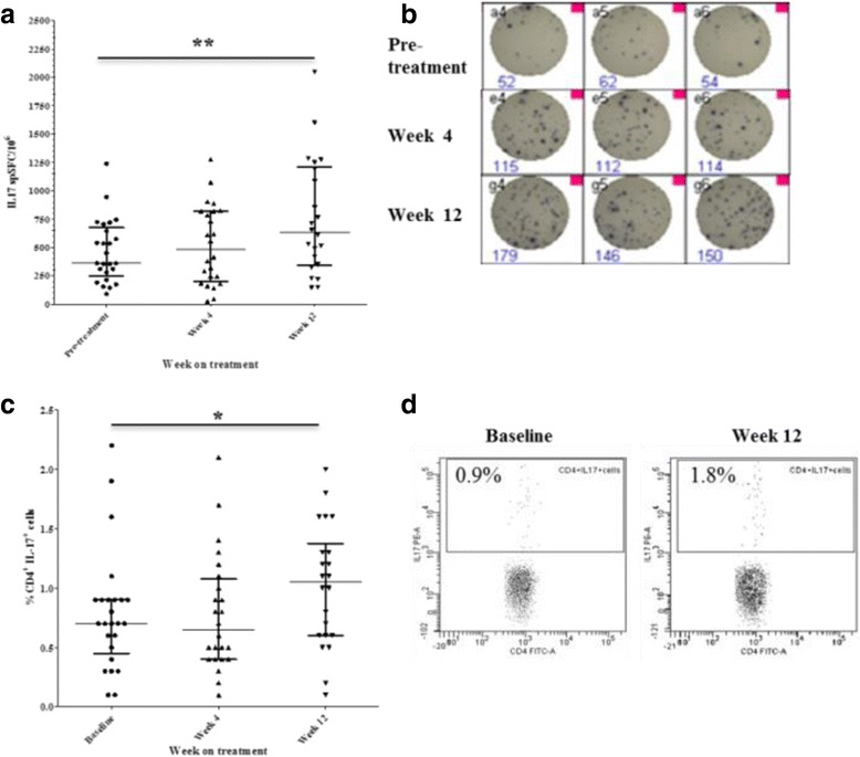 Anti-TNF treatment increases frequency of circulating T helper (Th)17 cells. Change in numbers of IL17-producing peripheral blood mononuclear cells during anti-TNF treatment determined by IL17 enzyme-linked immunospot (Elispot) assay ( a ) and representative IL17 Elispot experimental wells ( b ). PBMC (n = 200,000) were seeded in triplicate in each experiment and stimulated with 1 mg/ml anti-CD3 antibody for 20 hours and the numbers of cytokine-producing cells were enumerated. Change in the frequency of circulating CD4 + IL17+ cells in the peripheral blood of patients with rheumatoid arthritis (RA) determined by flow cytometry ( c ) and representative dot plots ( d ). Bars represent median and interquartile range; * p