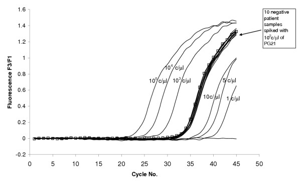 Reproducibility of the LightCycler assay in clinical samples. The LightCycler PCR run of 10 negative clinical samples spiked with the known PG21 DNA concentration of 10 2 copies/μl. The assay showed no inhibition, all curves came up at the same time as 10 2 copies/μl of PG21 (marked with squares) from the standard dilution series.