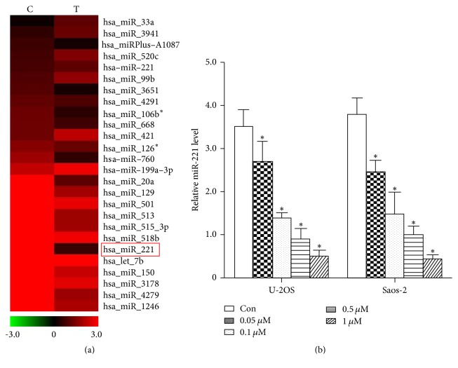 Bufalin downregulates miR-221 in U-2OS and Saos-2 cells. (a) Microarray analysis was used to compare the expression profiles of miRNAs in Saos-2 cells that were untreated or treated with bufalin at its IC50. miR-221, one of the most markedly downregulated miRNAs, was labeled with a red box. (b) Detected by qRT-PCR, miR-221 level dramatically decreased 2–5-fold after being treated with bufalin in both U-2OS and Saos-2 cells ( ∗ P