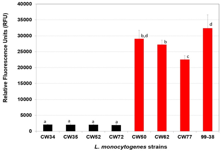 Adherence of various strains of L. monocytogenes using the microplate fluorescence (5,6-CFDA) adherence assay. Weakly- and strongly-adherent strains are represented by black and red bars, respectively. Data bars represent the mean of triplicate replications. Means that share the same lowercase letters are not significantly different; means with different letters are significantly different ( P