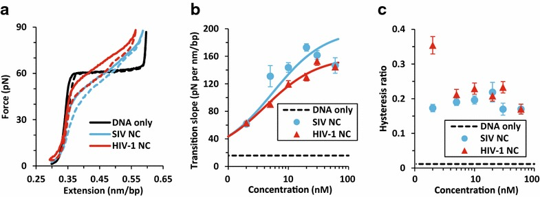 a Force-extension curves for dsDNA stretch ( solid lines ) and return ( dashed lines ) with no protein and in the presence of 30 nM SIV NC or HIV-1 NC. b , c Dependence of the measured transition slope ( b ) and hysteresis area ratio ( c ) on protein concentration (see Additional file 4 ) for HIV-1 NC and SIV NC. The lines in ( b ) are fits to a simple binding isotherm (Additional file 4 : Eq. 6), revealing equilibrium dissociation constants K d = 5.5 ± 0.4 nM for SIV NC and K d = 4.2 ± 0.4 nM for HIV-1 NC. Error bars are standard errors for three or more measurements