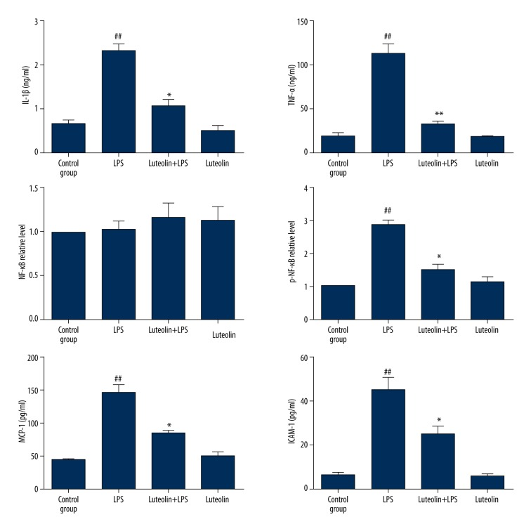 Effect of luteolin on LPS-induced TNF-α, total NF-κB, p-NF-κB, IL1β, MCP-1 and ICAM-1 protein expressions. Kidneys from mice treated with control buffer, LPS, and LPS plus luteolin were evaluated for protein expressions by ELISA analysis. Data are expressed as mean ±SEM. # P