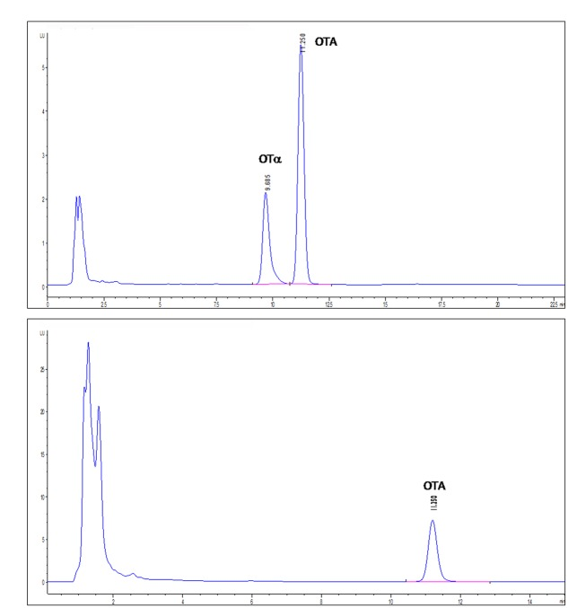 High-performance liquid chromatography with fluorescence detection (HPLC-FLD) chromatograms of IPTG-induced (A) or not IPTG-induced (B) E. coli BL21-CodonPlus-RIL-pET-28a(+)-PJ15_1540 cell lysates tested for OTA degradation. Retention times: OTA, 11.250 min; OTα, 9.685 min.
