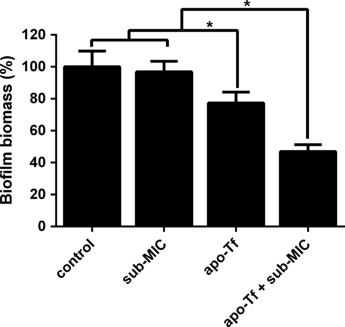 Effect of VAN with and without transferrin on biofilm formation of Staphylococcus epidermidis ATCC 35984. The graph presents biofilm biomass (%) for the strain grown in LB broth (control) or in LB broth amended with subinhibitory concentrations (sub‐ MIC ) of VAN or apo‐Tf (4 mg/mL) or both of them (apo‐Tf + sub‐ MIC ). Statistically significant differences are indicated for each sample treated with apo‐Tf alone or apo‐Tf combined with sub‐ MIC VAN compared to the control and sample treated with sub‐ MIC VAN only (* P