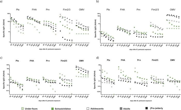 Impact of age group factors on IgG subclass levels against B. pertussis specific antigens. Median levels of IgG subclasses IgG1 ( a ), IgG2 ( b ), IgG3 ( c ) and IgG4 ( d ) to B. pertussis specific antigens predicted by our biexponential decay model for six time points, i.e. day 28, day 70 (week 10), day 140 (week 20), day 365 (year 1), day 730 (year 2), day 1095 (year 3) (shown in days, non-linear time axis), for each age group, as indicated.