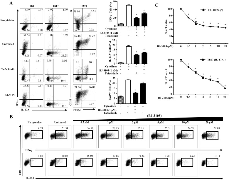 BJ-3105 decreases the percentage of antigen-specific Th1 and Th17 cell differentiation. (A) Naïve CD4 + T cells and antigen presenting cells from spleens and lymph nodes were isolated by immunomagnetic positive selection from 6–10 weeks OT-II mice. CD4 + T cells and irradiated antigen presenting cells were cultured in Th1, Th17 and Treg cells differentiation conditions in the presence of OVA 323–339 (0.1 μM) with BJ-3105 (1 μM) or tofacitinib (1 μM). CD4 + T cells were then restimulated with PMA, ionomycin and golgistop for 4 h and analyzed by intracellular cytokine staining by flow cytometer. The untreated controls were cultured in the presence of DMSO. (B) The cells were cultured in Th1 and Th17 cells differentiation conditions for 72 h with different concentration of BJ-3105 and analyzed by flow cytometer. (C) Compilation of data from three individual experiments showing the inhibitory effect of different dose of BJ-3105 on Th1 (Upper) and Th17 (bottom) cytokine production were shown. For each cytokine, data were normalized to the percentage of cytokine producing cells in the absence of BJ-3105. Representative results of three experiments are shown. *p
