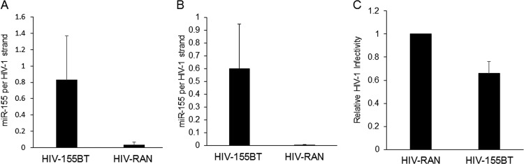 Quantification of <t>HIV-1</t> genomic RNA and miR-155 levels in virions. Standard curves for both miR-155 and the HIV-1 pol gene were generated by TaqMan qRT-PCR. Experimental values for miR-155 and HIV-1 RNA levels in total RNA isolated from purified HIV-1 virions were measured, and the absolute numbers of each molecule were determined. (A) Number of miR-155 copies per HIV-1 genomic RNA in virions produced from CEM-SS T cells infected with HIV-miR-155BT or with the HIV-RAN control. (B) Similar to panel A except that the number of miR-155 copies per HIV-1 genomic RNA were determined in virions produced by 293T cells expressing ectopic miR-155. (C) Inhibition of HIV-1 infectivity by miR-155 packaged into HIV-1 virions. Pseudotyped virions (HIV-RAN and HIV-155BT) were produced in 293T cells expressing ectopic miR-155, and equivalent amounts of virus, as determined by p24 level, were used to infect naive 293T cells. Cells were lysed at 20 h postinfection, and NLuc levels were determined. The data shown are from three independent experiments with standard deviations indicated.