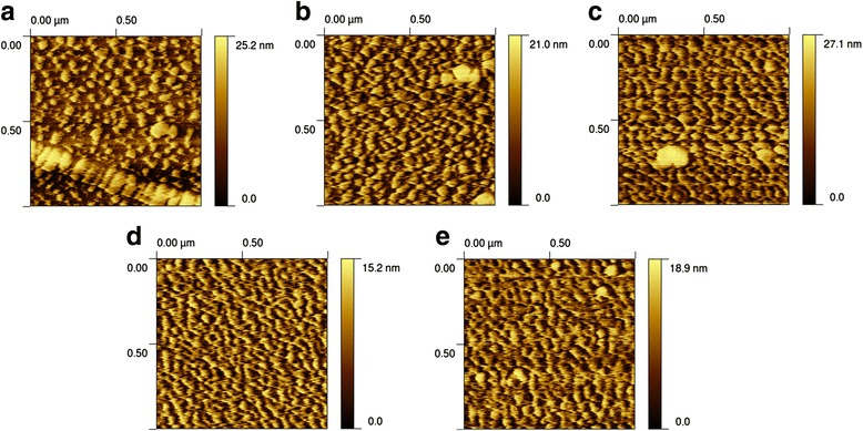 AFM images of sample surfaces. AFM images of the surface after 10-min activation by different cleaning solutions: a H 2 O 2 :KOH [1:2], b H 2 O 2 :KOH [1:3], c H 2 O 2 :NaOH [1:2]. Images of sample surfaces before cleaning: d uncleaned, 1-year-old gold layer; e uncleaned, 2-month-old gold layer