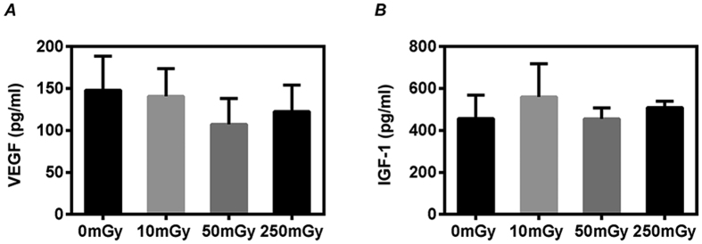 Growth factors production of cardiac explant-derived cells (CDCs). CDCs were expanded from mouse after daily exposures to 0, 10, 50 and 250 mGy γ-rays for 7 days. The supernatants from the twice-passaged CDCs were collected for measuring the concentration of VEGF ( A ) and IGF-1 ( B ) by ELISA. Values are the mean ± SD (n = 3).