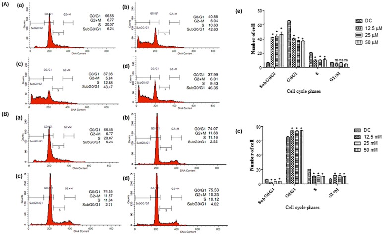 Cell cycle analysis examined using flow cytometry on HT-29 cells after 72 h treatment. (A) Cells treated with (a) DMSO at the final concentration of 0.1%. (b) FKB at a concentration of 12.5 (3.55 μg/mL), (c) 25 (7.1 μg/mL), (d) 50 μM (14.2 μg/mL), and (e) Percentage of cell cycle distribution in different phases. (B) Cells treated with (a) DMSO at the final concentration of 0.1%. (b) APN at 12.5 (3.37 μg/mL), (c) 25 (6.75 μg/mL), (d) 50 μM (13.5 μg/mL) concentrations, and (e) Percentage of cell cycle distribution in different phases. G0/G1, G2+M, and S are cell phases, respectively; subG0/G1 refers to cell death due to DNA fragmentation. Data are expressed as Mean±SD of three independent experiments, *p