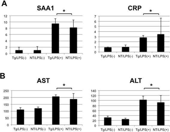 Expression of genes related to inflammatory response, and serum levels of transaminases in mice. (A) Expression levels of SAA1 and CRP genes were determined using quantitative real-time PCR in the livers of NS5A-transgenic (Tg) and non-transgenic (NT) mice 6 h after injection with LPS (N = 5, each) or normal saline (N = 3, each). (B) Serum levels of AST and ALT were determined in these mice using a dry chemistry technique. * statistically not significant.