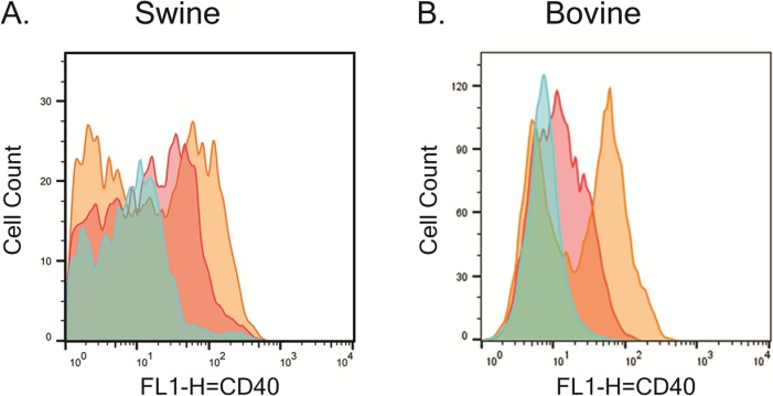 The mAb 2E4E4 recognized CD40 on stimulated swine and bovine PBMCs. Flow cytometry performed on A) swine and B) bovine PBMCs stimulated (Gold) or not stimulated (Red) with LPS and probed with the mAb 2E4E4. IgG1 isotype control (Blue) was also used to probe LPS-stimulated swine and bovine PBMCs.