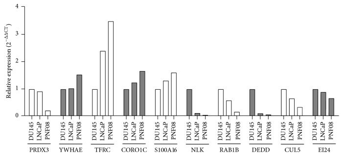 Quantification of mRNA expression in primary normal prostate (PNF-08) cells and the DU145 and LNCaP PCa cell lines. The expression of ten mRNAs that were assumed to be elevated or reduced according to their presence or absence in the Ago complex was assessed by qRT-PCR. YWHAE, TRFC, CORO1C, and PRDX3 were predicted to be elevated while, NLK, RAB1B, DEDD, CUL5, EI24, and S100A16 were predicted to be reduced in PCa cells as compared to PNF-08 cells.