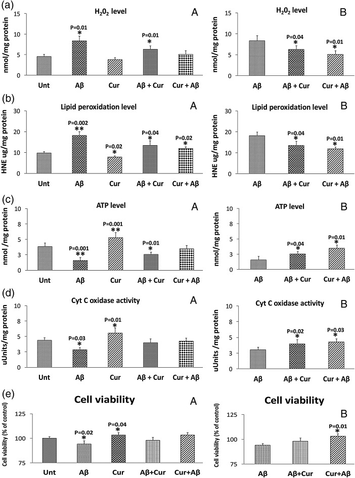 Mitochondrial functional parameters in control human neuroblastoma (SHSY5Y) cells, in amyloid β (Aβ) incubated SHSY5Y cells, in SHSY5Y cells treated with curcumin and in SHSY5Y cells incubated with Aβ and then treated with Aβ and in SHSY5Y cells treated with curcumin and then incubated with Aβ (n=4). We analyzed mitochondrial functional data in two ways: (1) the control SHSY5Y cells were compared with the SHSY5Y cells treated with Aβ, curcumin, Aβ+cucumin and curcumin+Aβ and (2) Aβ incubated SHSY5Y cells were compared with Aβ+curcumin SHSY5Y cells and curcumin+Aβ treated cells. We performed statistical analysis using ANOVA following the Dunnett correction, for: (a) H 2 O 2 production, (b) lipid peroxidation, (c) ATP levels, (d) cytochrome oxidase activity and (e) cell viability.