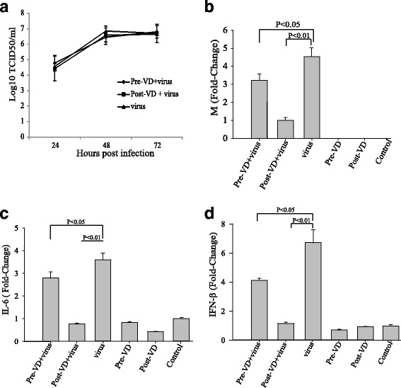 The effects of calcitriol on <t>A549</t> cells. a Effect of calcitriol treatment on virus growth kinetic in A549 cells. Cell culture supernatants were harvested every 24 h from infected cells and the viral load was titrated using the TCID50 assay. Real-time PCR was used to measure the effect of calcitriol treatment on the mRNA expression levels of the viral M gene ( b ), IL-6 ( c ), and IFN-β ( d ) in A549 cells. β-actin was used as an internal control. The data are expressed as mean ± SEM of triplicate samples