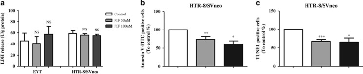 Effect of sPIF on cell viability and <t>apoptosis.</t> ( a ) LDH levels in the culture medium for human primary EVT and HTR-8/SVneo cells after a 24-h incubation in the absence (control) or presence of sPIF (50 and 100 nM). The values are the mean±S.E.M. of four independent experiments. ( b ) Annexin V-FITC assay of HTR-8/SVneo cells after 48 h of culture in the absence (control) or presence of sPIF (50 or 100 nM). The values are the mean±S.E.M. from 10 independent experiments and are expressed as a percentage of the control. ( c ) TUNEL staining in HTR-8/SVneo cells after 48 h of culture in the absence (control) or presence of sPIF (50 or 100 nM). The values are the mean±S.E.M. from 6 to 11 independent experiments and are expressed as a percentage of the control. *** P