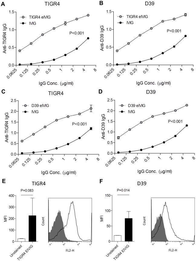 eIVIG immune recognition of S . pneumoniae . (A-D) Whole cell ELISAs of IgG binding to solid-phase S . pneumoniae of increasing concentrations of eIVIG made using TIGR4 (A and B) or D39 (C and D) or IVIG. Binding was assessed to the solid phase strain that was homologous ( A and D ) or heterologous ( B and C ) to the enrichment strain. ( E-F ) Bacterial surface IgG binding measured by flow cytometry to S . pneumoniae TIGR4 (E) or D39 (F) incubated in either PBS (shaded area) or TIGR4 eIVIG at 30 μg/ml (solid line). P values were calculated using linear regression for panels A, B, C, and D, and unpaired 2-tailed Student t-tests for panels E and F.