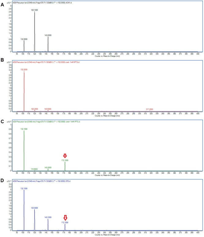 Mass spectra showing the AHL profile of spent culture supernatant of E. coli BL21(DE3)pLysS harboring pET28a_ cneI . ACN (A) was used as blank. The EIC spectra of E. coli with pET_28a alone (B) and with pET28a_ cneI (C) were compared with that of synthetic AHL, C4-HSL (D) at the same retention time. The detection of the peaks with m/z 172.100 signify the presence of C4-HSL as shown by arrows.
